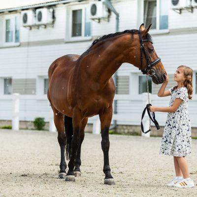 Семейный конный клуб DERGACHOV